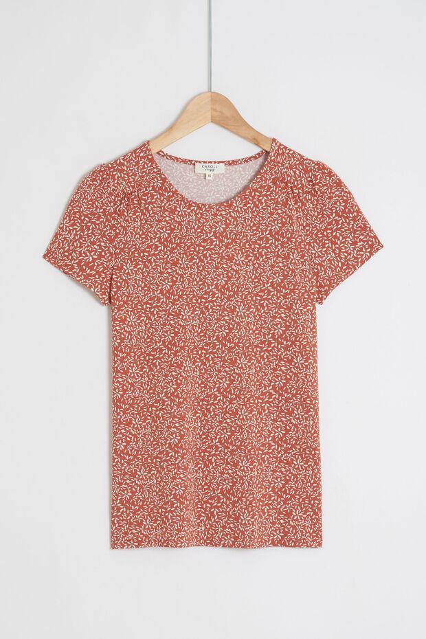 t-shirt dawson - Caroll